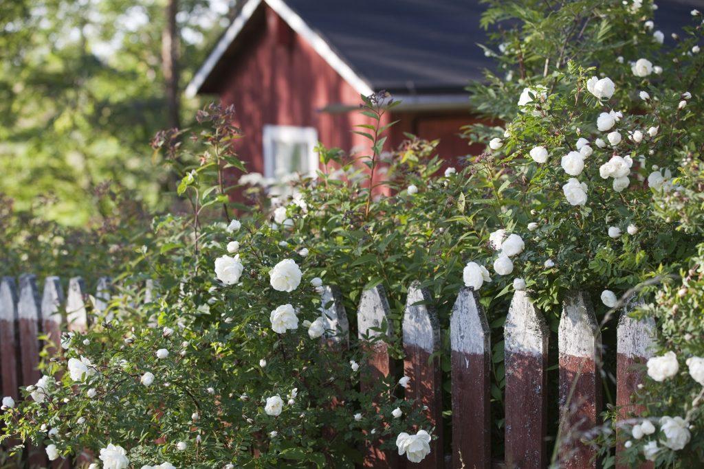 ©Visit Finland